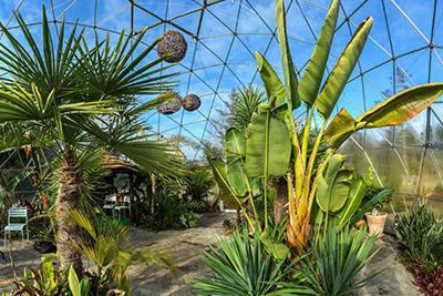 Solar Dome